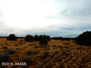 8553 Huggins Drive, White Mountain Lake, AZ 85912