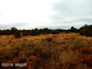 8549 Huggins Drive, White Mountain Lake, AZ 85912