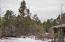 TBD Show Low Lake Road, Lakeside, AZ 85929