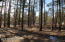 4509 Indian Trail, Show Low, AZ 85901