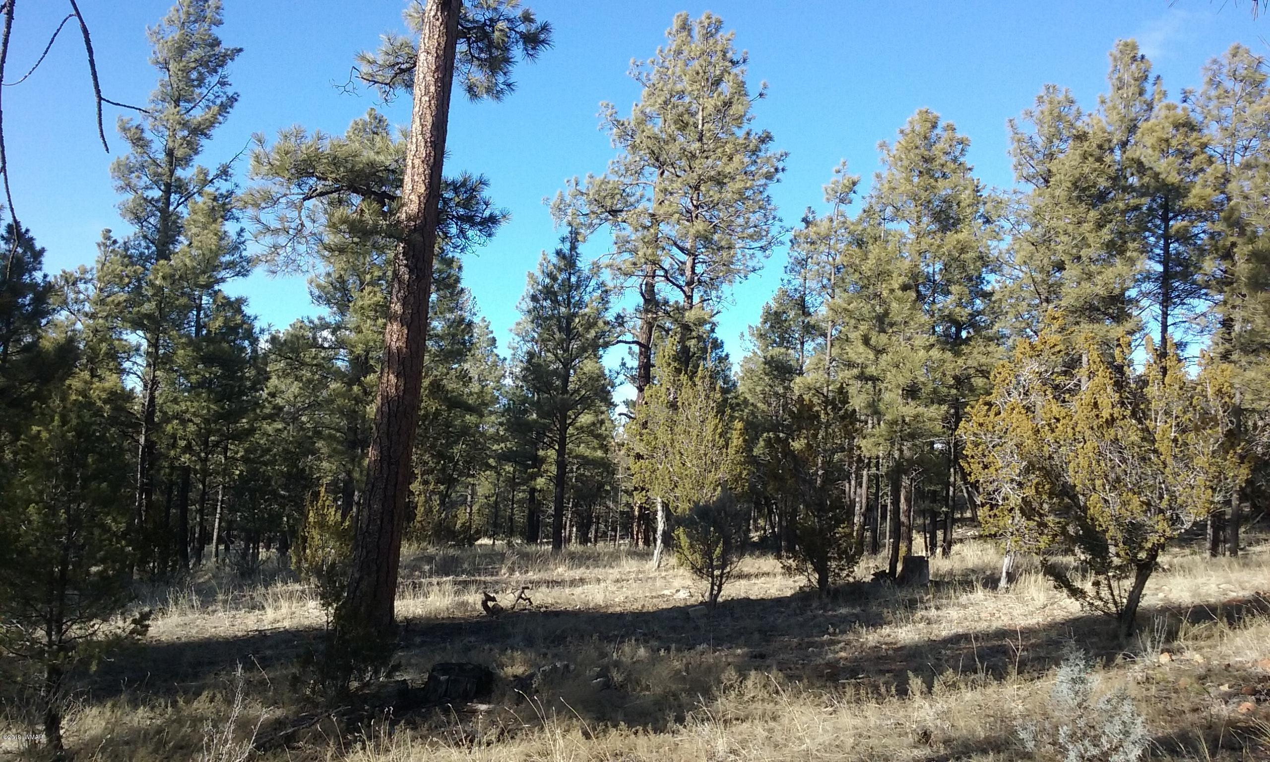 Wonderful property with tall ponderosa  pines, lots of natural vegetation. Beautiful views with privacy. Great location!! Secluded and private yet still close by shops, restaurants and close by access to forest service entries. Great place to build potential dream cabin in the woods.