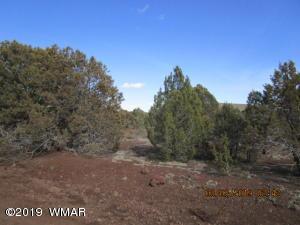 Lot 62 ACR 3182, Vernon, AZ 85940