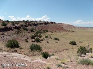 TBD Woodland Valley Ranch #16, St. Johns, AZ 85936