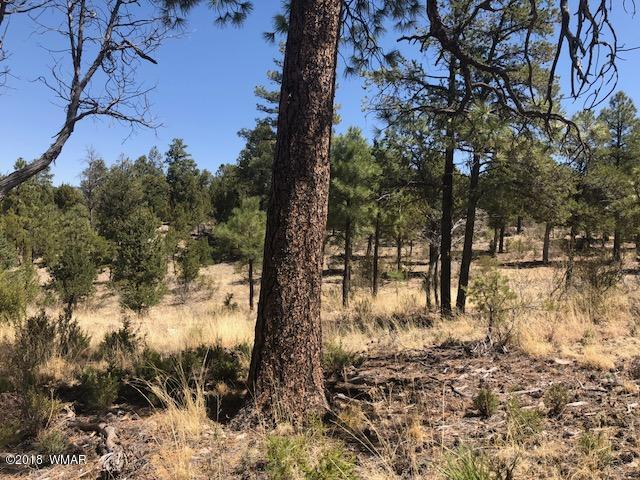 Wonderful building lot located in the Summer Place North subdivision in Overgaard. This lot offers a mix of tall pines, a level building area that is secluded for privacy & offers potential views from a second story! A 3 bedroom septic is already installed! Underground utilities and paved roads make this a desirable location for a custom cabin for year round living.