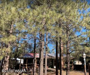 2050 Grey Squirrel Trail, Overgaard, AZ 85933