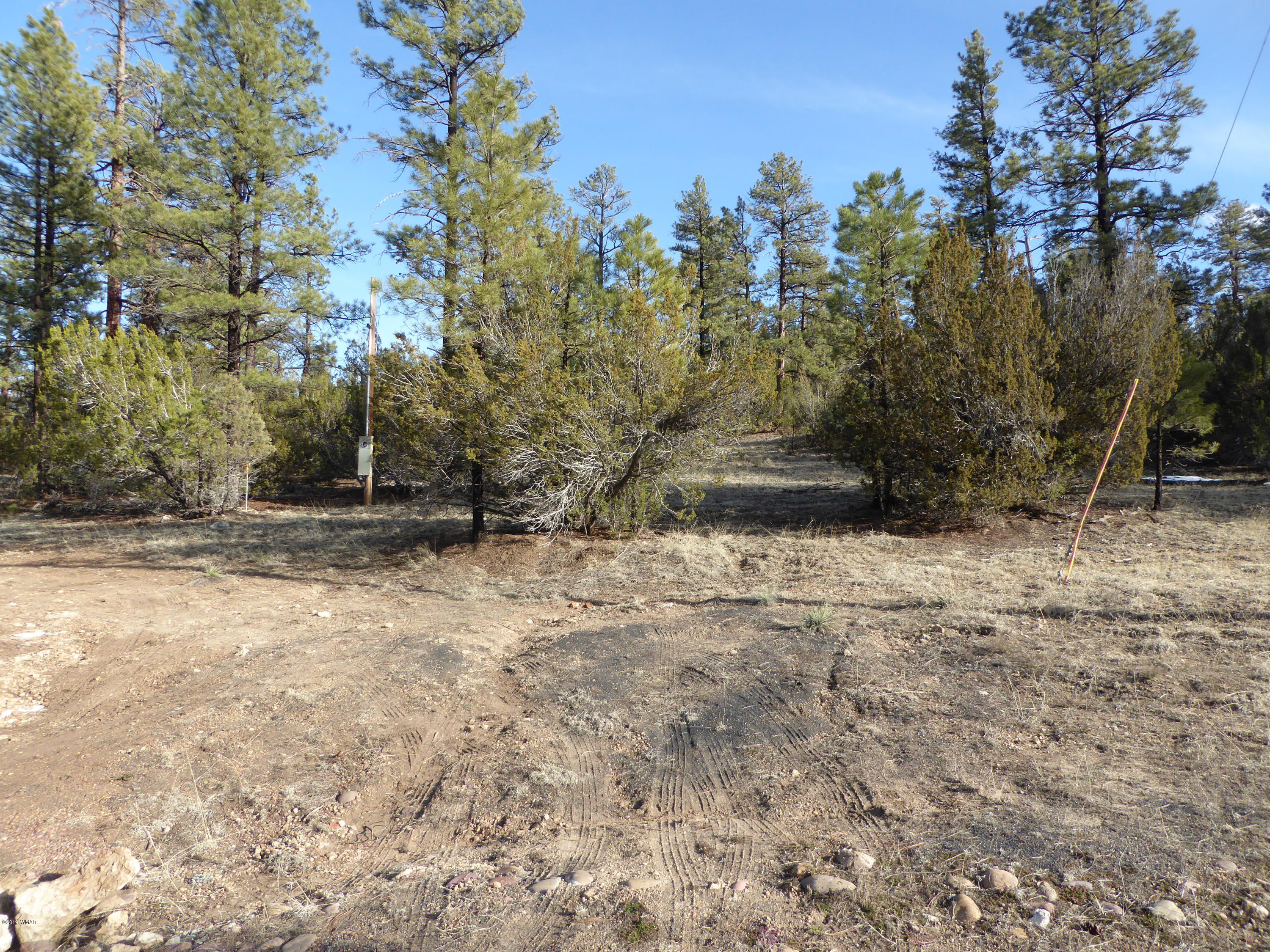 very nice 2.36 Acre lot with tall pines and junipers on the property. This property has great views and several spots for your site built home also  you can buy the 2.55 acres behind this one that backs up to the national Forest for a total of 4.91 acres. These properties are a must see.