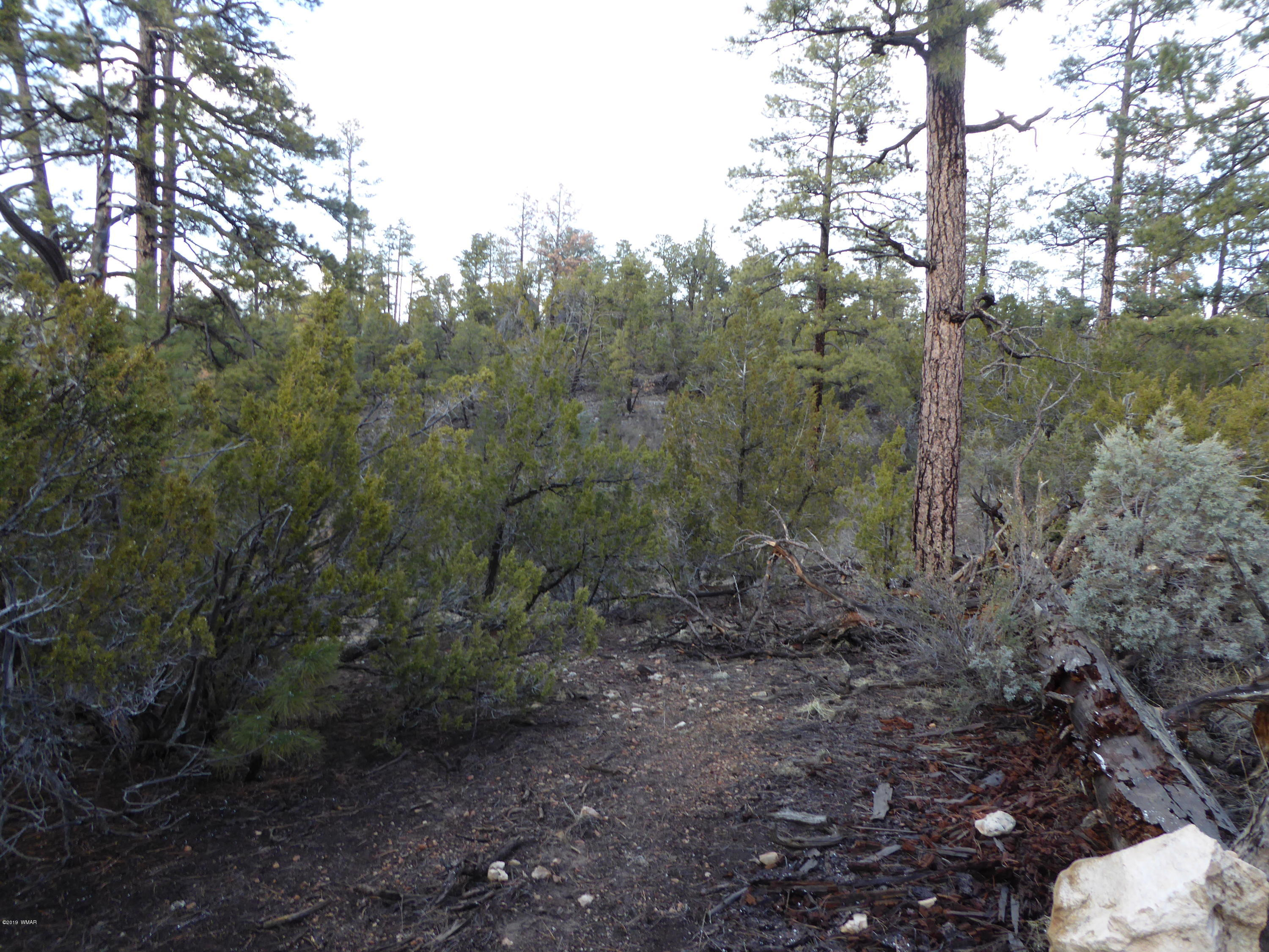 This beautiful 2.55 acre lot backs to the National Forest. A nice spot at the top of the hill for your new home. Nice views all around with plenty of ponderosa and junipers on the lot also the 2.36 acre lot next to this one is also for sale for a total of 4.91 acres. These properties are a must see.