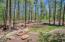 7856 Tall Pine Drive, Pinetop, AZ 85935