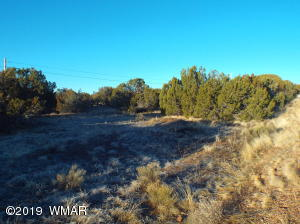 8761-8771 Silver Creek Dr. Drive, White Mountain Lake, AZ 85912