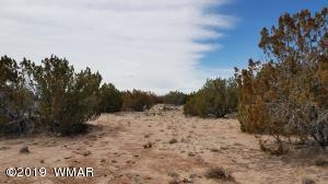 Lot 187 Red Sky Ranches, St. Johns, AZ 85936