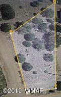 8616 Fox Circle, Show Low, AZ 85901
