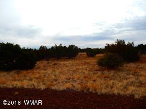 8513 Diewald Place, White Mountain Lake, AZ 85912