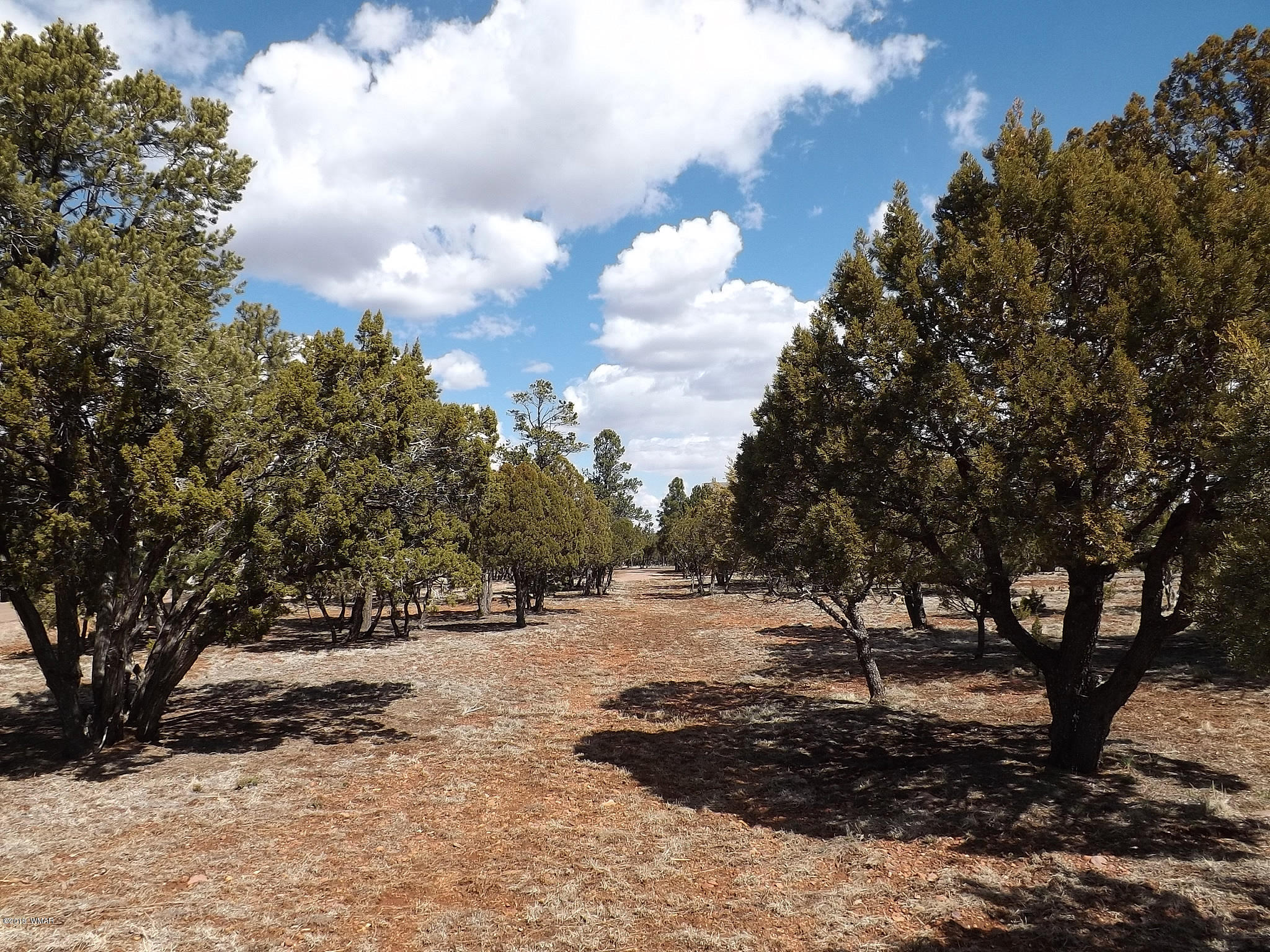 Spectacular 0.93 acre lot in Mogollon Air Park. This lot fronts to a tie down area and has taxiway access, Very level with a natural building site. Room enough for your dream cabin and a hangar. Underground utilities to the lot and has a septic installed. County maintained roads for easy year around access. Very nicely treed.