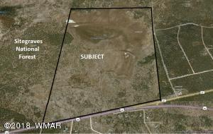 353 US 60, Vernon, AZ 85940