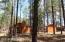 750 E Woodland Lake Road, Pinetop, AZ 85935