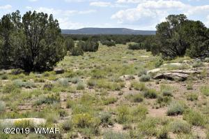 Lot 599 CR 8570, Concho, AZ 85924