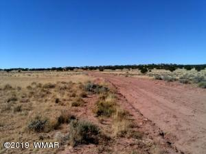 Lot 272 Red Sky Ranch, CR N7129, St. Johns, AZ 85936