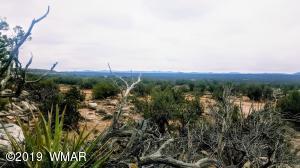 9030 Ridge View Lane, Snowflake, AZ 85937