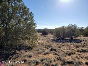 4362 Colt Road, Snowflake, AZ 85937