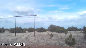 Lot 13 Ranch of the White Mountains, CR N9020, Concho, AZ 85924