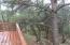 3467 Wildflower Drive, Overgaard, AZ 85933