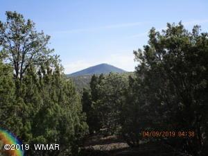 005T ACR N3085, Vernon, AZ 85940