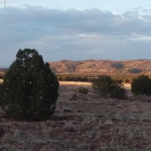 Lot 62 Pinon Valley Ranch, CR N8605, Concho, AZ 85924