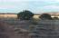 Lot 62 Pinon Valley Ranch, CR N8605, Concho, AZ 85924