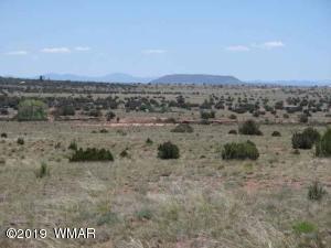 5215 Black Mesa Valley Road, Snowflake, AZ 85937