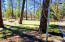 2858 Beavertail Lane, Pinetop, AZ 85935