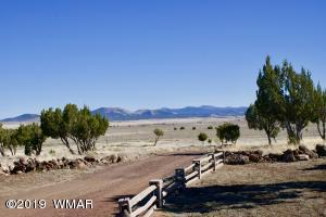 Lot 33 CR 3451, Concho, AZ 85924