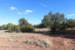 2971 W Bryant, Snowflake, AZ 85937