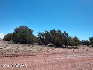 4301 Colt Road, Snowflake, AZ 85937