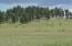 42734 US-180, Alpine, AZ 85920