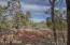 3350 W Rim Road, Lakeside, AZ 85929