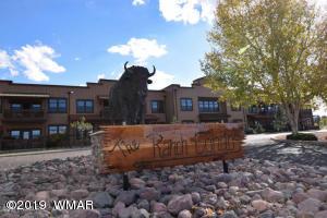 2393 Quarter Horse 229, Overgaard, AZ 85933