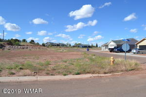 290 S Granite Circle, Taylor, AZ 85939