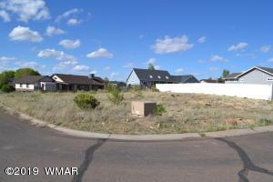 720 S Sandstone Circle, Taylor, AZ 85939