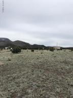 LOT 182 COUNTY RD. 2005, LOT 182 WHITE MTN. ACRES, Nutrioso, AZ 85932