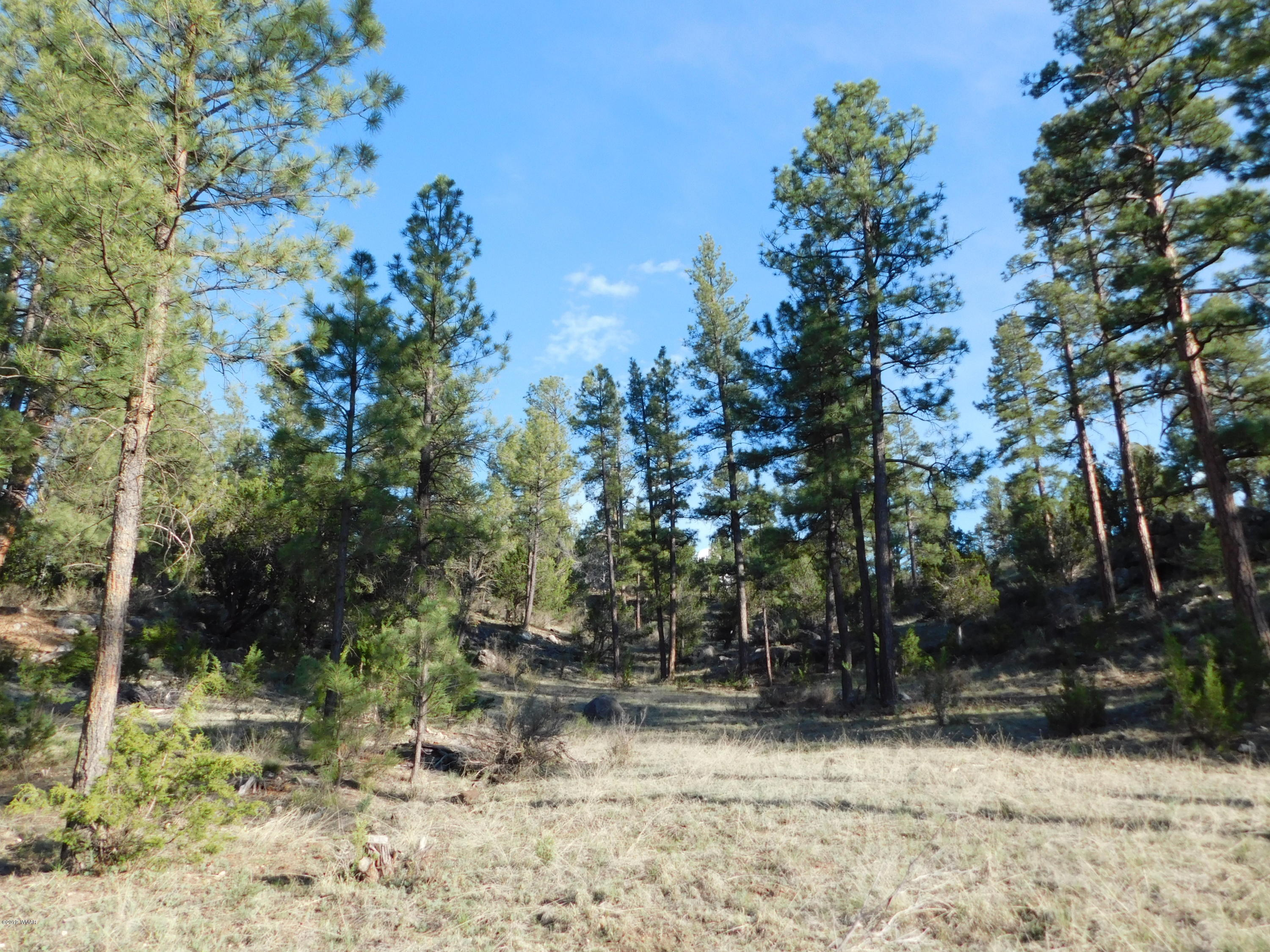 Rare and hard to find 4.09 acre homesite with trees, views, level & horses allowed!  This lot has it all with level area for horses and build your home nestled on the elevated portion with unique rock formations out your back door, allowing for a walkout/daylight basement and views!  The county maintained gravel road isn't far from paved and seasonal wash adds to the character.  Ride your horse to national forest as it's just a short distance away and best yet, the water is included in the low HOA dues!  Parcels like this don't come along often so don't wait, or it will be ''Too Late''.  Don't need 4 acres, you can split and sell after purchase as the subdivision is one acre minimum.  Best part, 2 forms of access off Ridge Road or Green Valley.  Build on top and