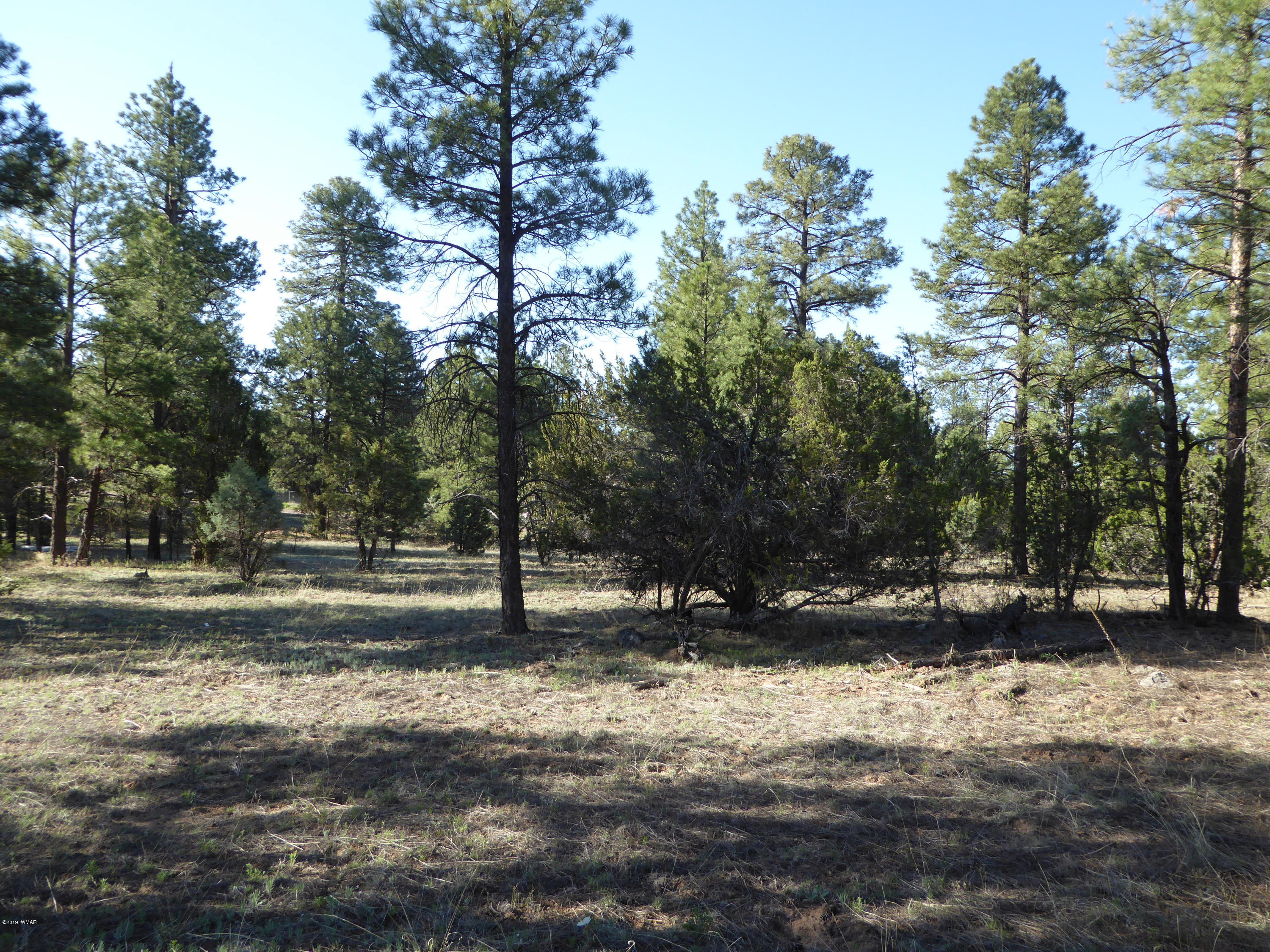 This one acre lot has tall pines and the gentle sloping property has a couple of nice location to choose for your site built home. county maintained paved street for year round easy access.