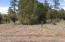 4670 W Hawthorn Road, Show Low, AZ 85901