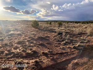 000 Vacant Land, Snowflake, AZ 85937