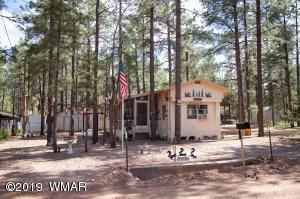 2167 N Woods Drive, Overgaard, AZ 85933