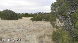 2553 Birdwing Lane, Clay Springs, AZ 85923