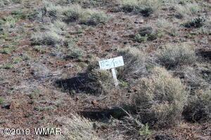 Lot 133 CR 5106, Concho Valley, AZ 85924