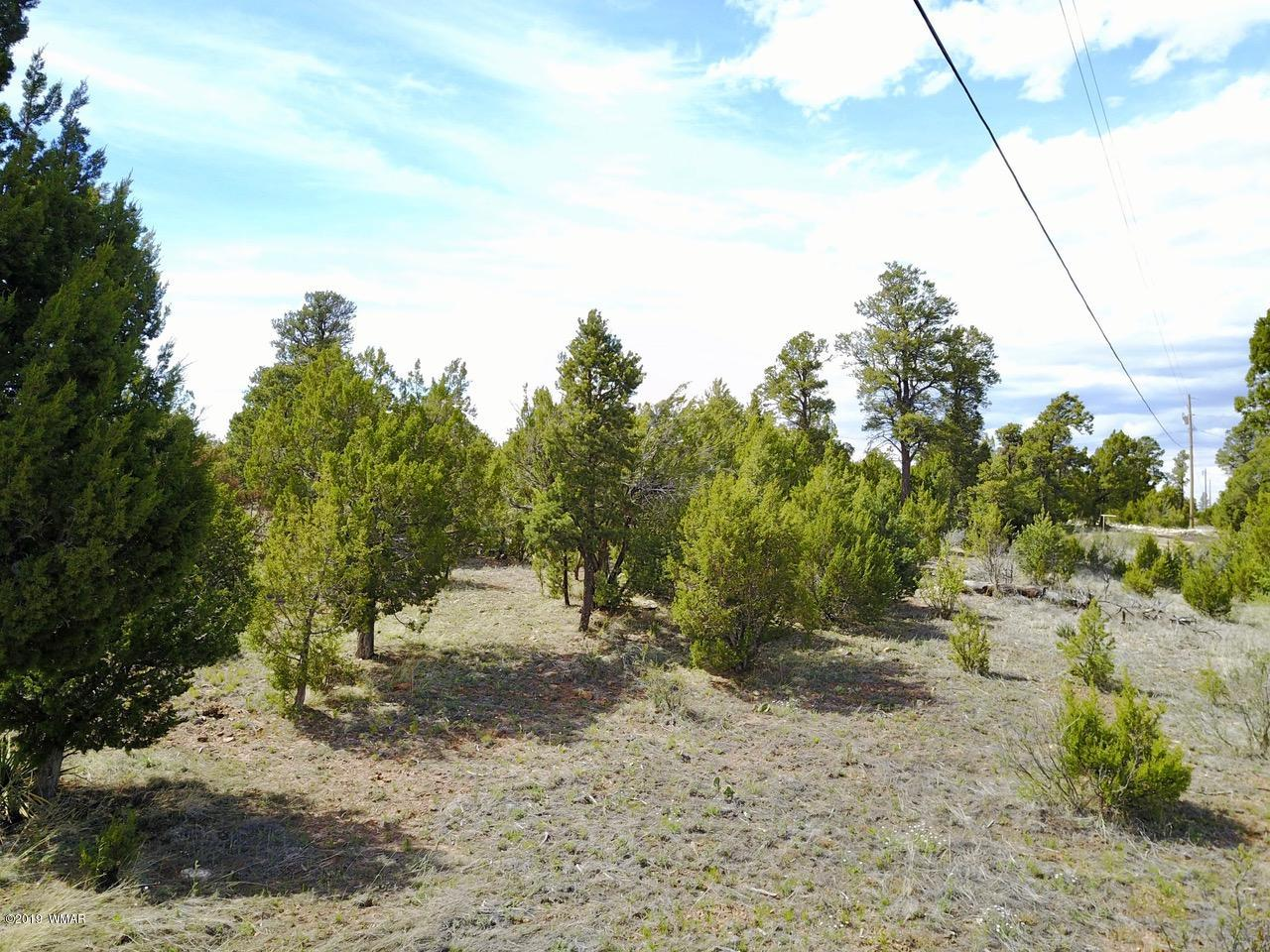 This is a great lot in a quiet area, super views of Black Canyon, level ground for easybuilding, nicely treed, power on lot line. This is a rare parcel of 3 acres. Do not missthis opportunity.