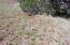 lot #330 ACR 3191, Vernon, AZ 85940