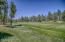 1400 S Jimson Loop, Show Low, AZ 85901