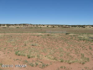 Lot 71 Antelope Ridge, Concho, AZ 85924